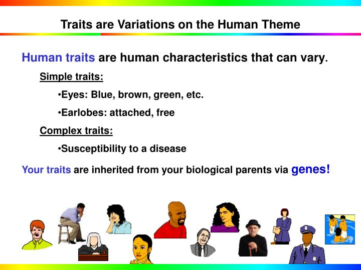 Traits are Variations on the Human Theme