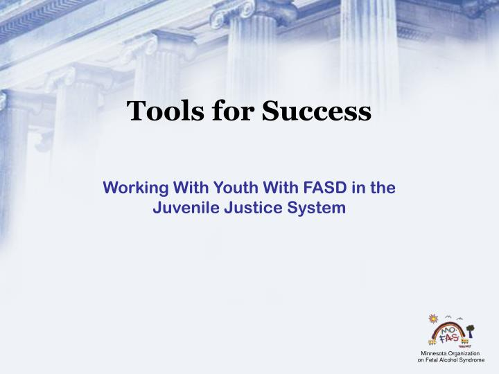 working with youth with fasd in the juvenile justice system n.