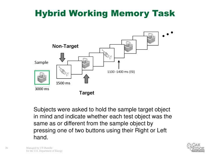 Hybrid Working Memory Task