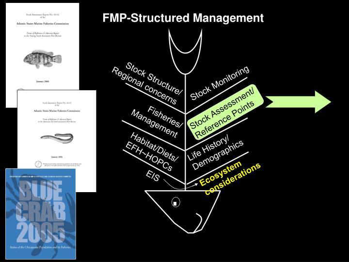 FMP-Structured Management