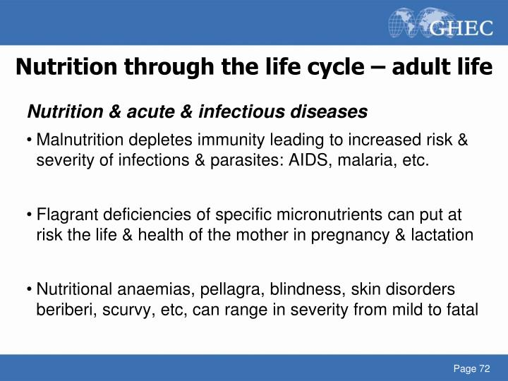 Nutrition through the life cycle – adult life