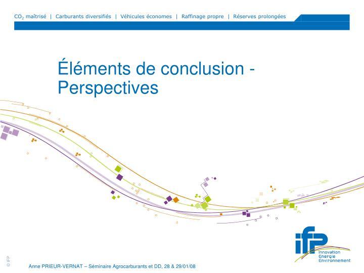 Éléments de conclusion - Perspectives