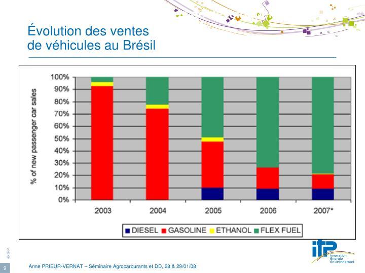 Exemples de développement : le Brésil