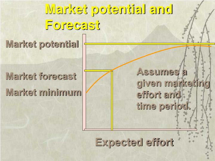 Market potential and