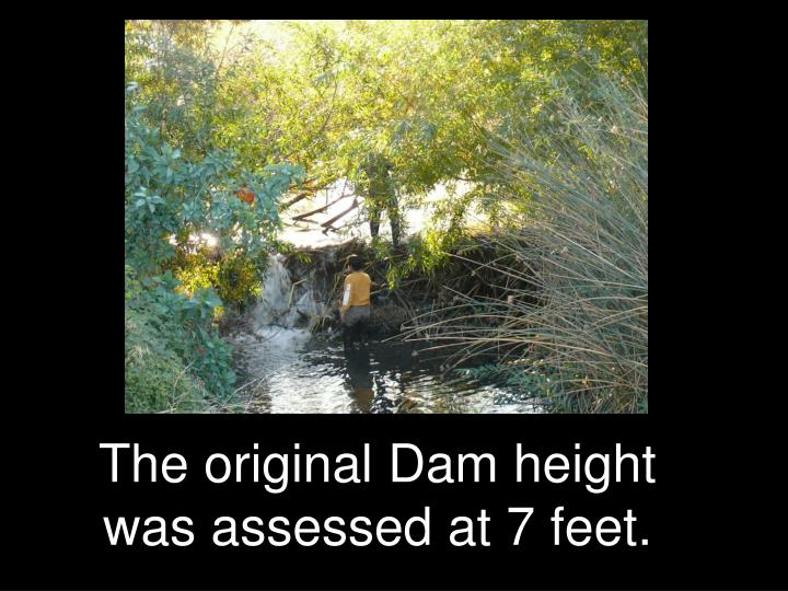 The original Dam height was assessed at 7 feet.