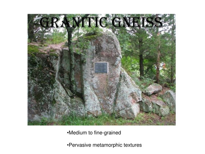 Granitic Gneiss