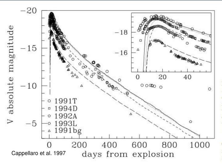 Cappellaro et al. 1997
