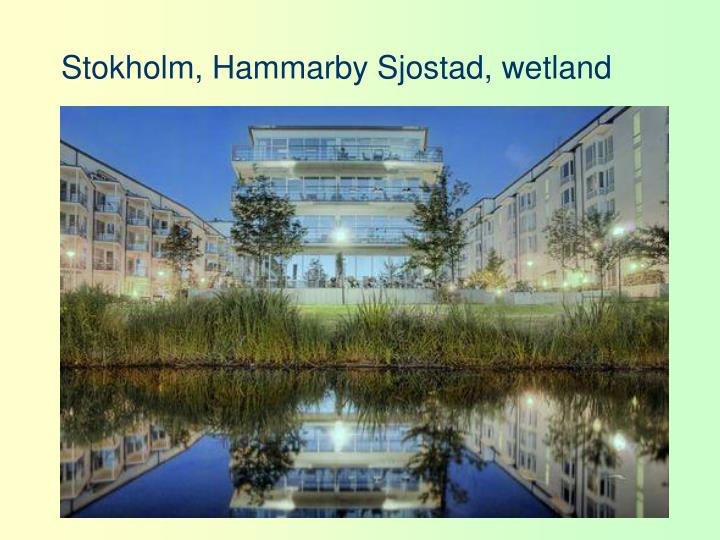 Stokholm, Hammarby Sjostad, wetland
