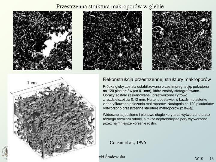 Przestrzenna struktura makroporów w glebie