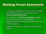 working forest easements