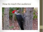 how to reach the audience