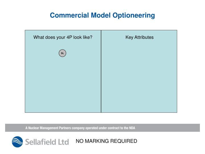 Commercial Model Optioneering
