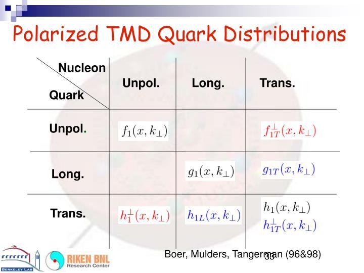 Polarized TMD Quark Distributions