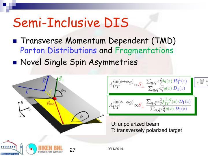 Semi-Inclusive DIS