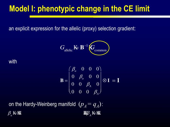 Model I: phenotypic change in the CE limit