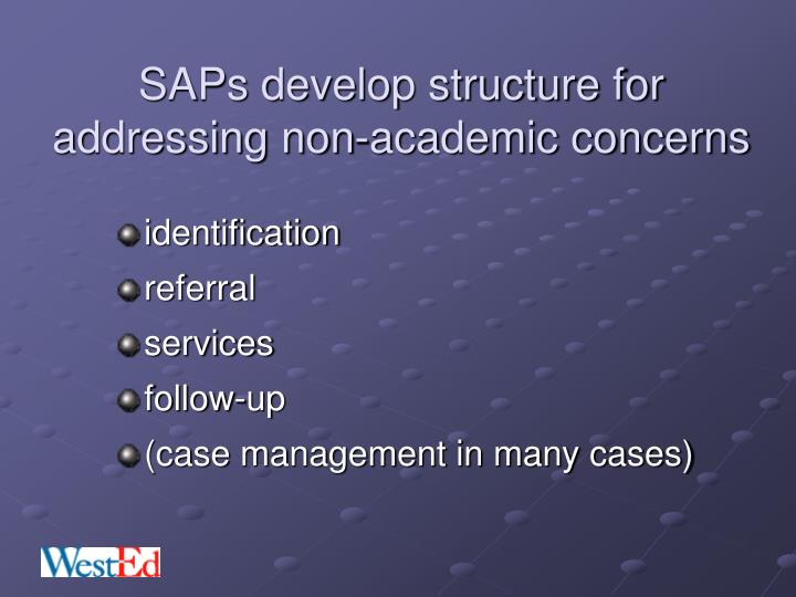 SAPs develop structure for addressing non-academic concerns