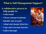 what is self management support1