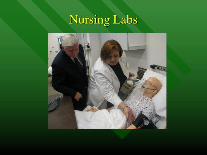 Nursing Labs