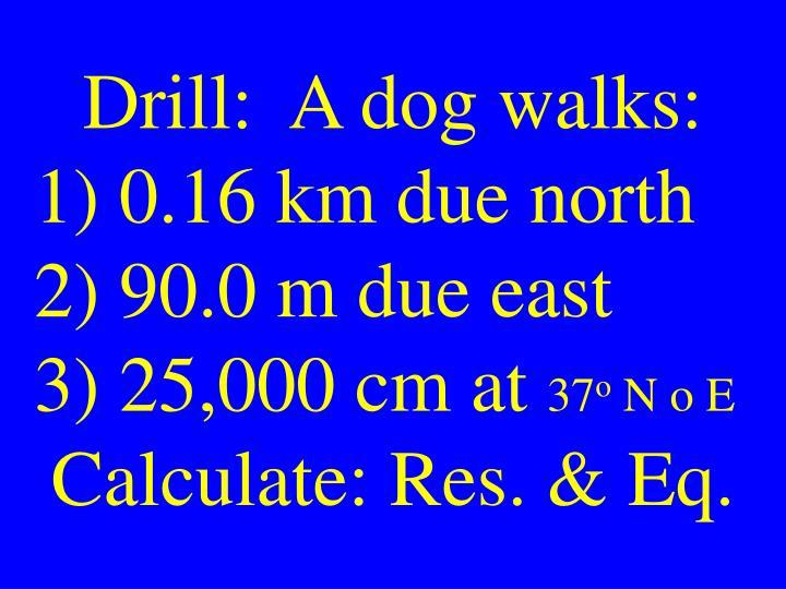 Drill:  A dog walks: