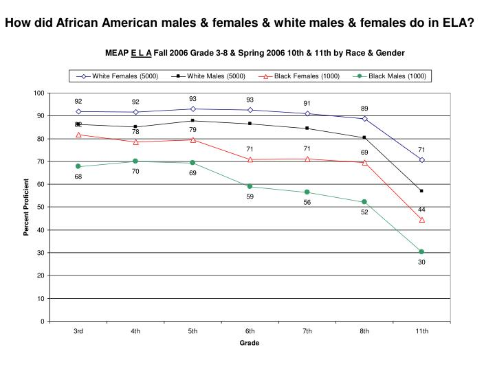 How did African American males & females & white males & females do in ELA?