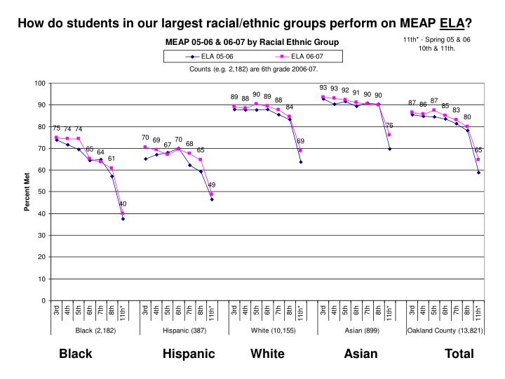 How do students in our largest racial/ethnic groups perform on MEAP