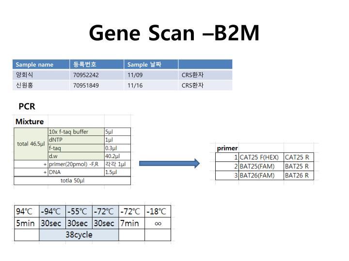 Gene scan b2m