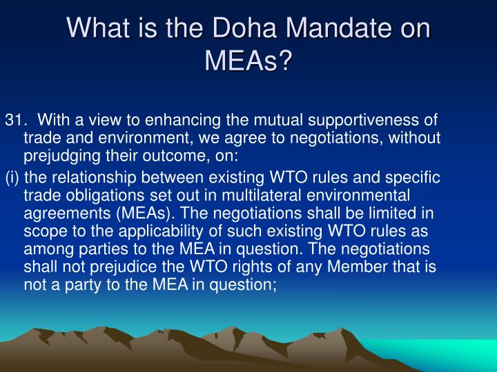 What is the doha mandate on meas