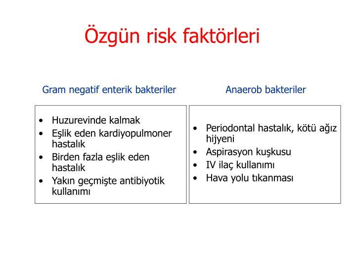 Özgün risk faktörleri
