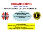 organisering6