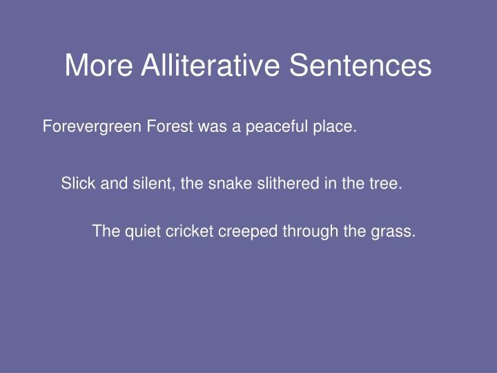 More Alliterative Sentences