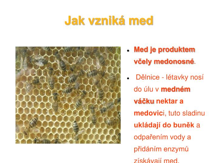 Jak vznik med