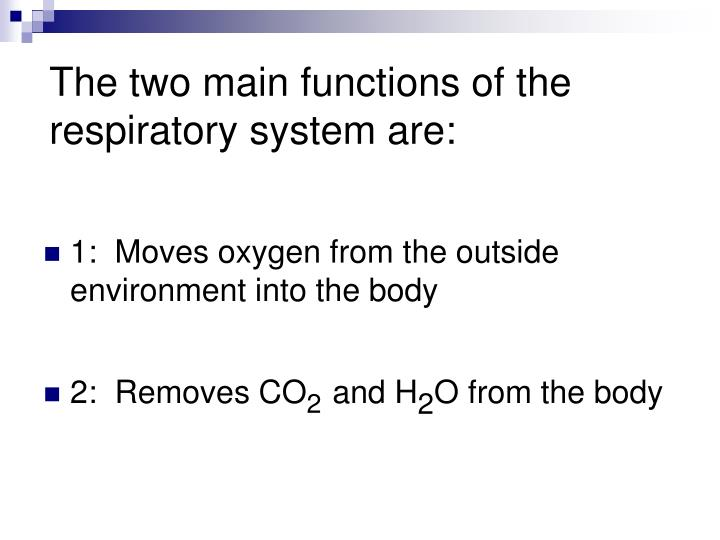 The two main functions of the respiratory system are: