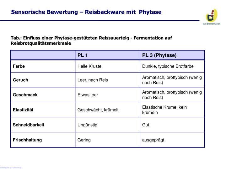 Sensorische Bewertung – Reisbackware mit  Phytase