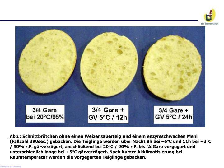 Abb.: Schnittbrötchen ohne einen Weizensauerteig und einem enzymschwachen Mehl (Fallzahl 390sec.) gebacken. Die Teiglinge werden über Nacht 8h bei –6°C und 11h bei +3°C / 90%