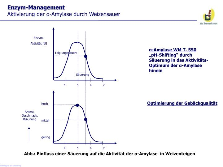 Enzym-Management