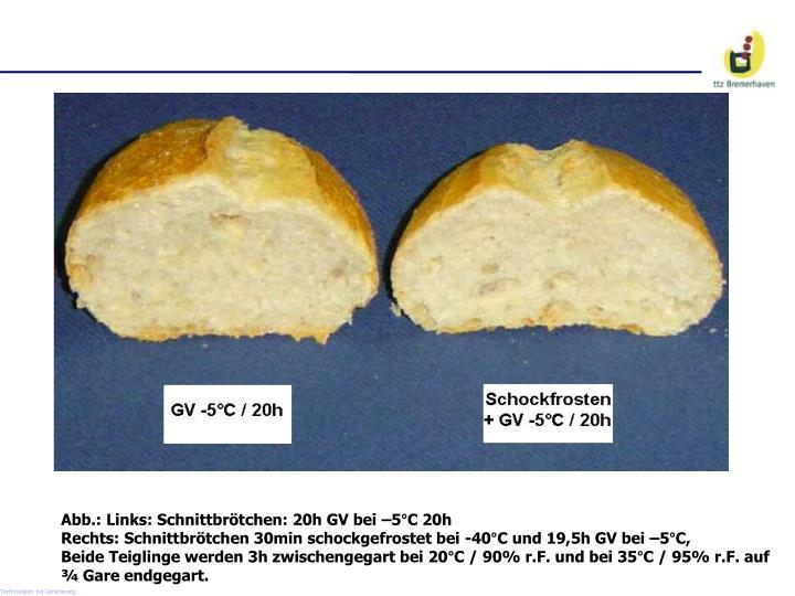 Abb.: Links: Schnittbrötchen: 20h GV bei –5°C 20h
