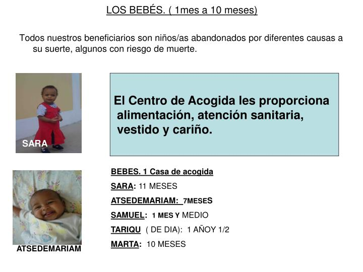 LOS BEBÉS. ( 1mes a 10 meses)