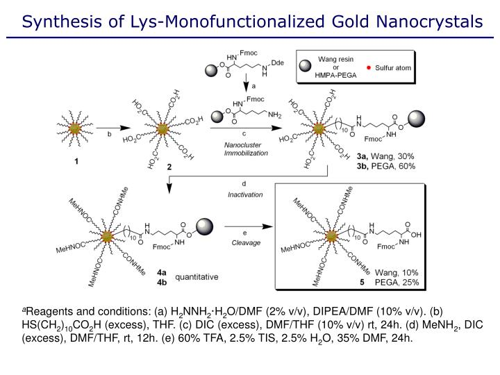 Synthesis of Lys-Monofunctionalized Gold Nanocrystals