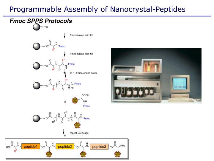 Programmable Assembly of Nanocrystal-Peptides
