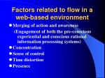 factors related to flow in a web based environment