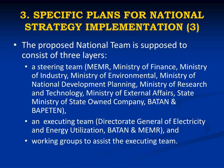 3. SPECIFIC PLANS FOR NATIONAL STRATEGY IMPLEMENTATION (3)