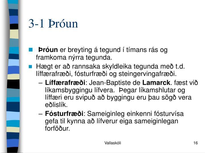3-1 Þróun