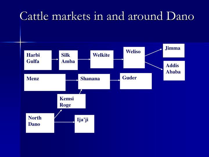 Cattle markets in and around Dano
