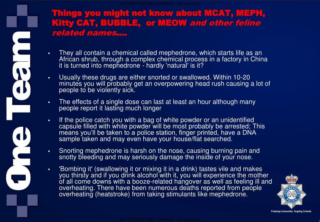 Mephedrone Dosage
