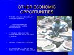 other economic opportunities