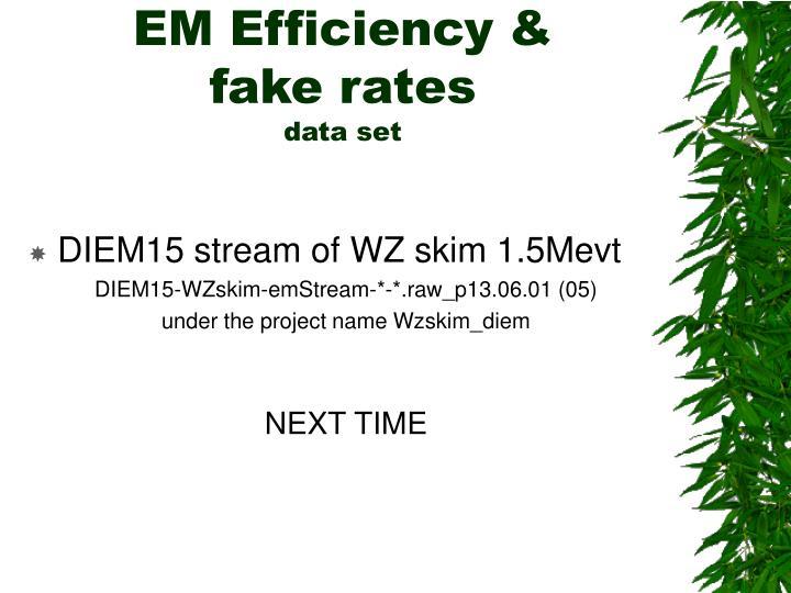 EM Efficiency &