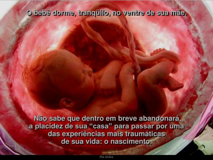 O bebê dorme, tranqüilo, no ventre de sua mãe.