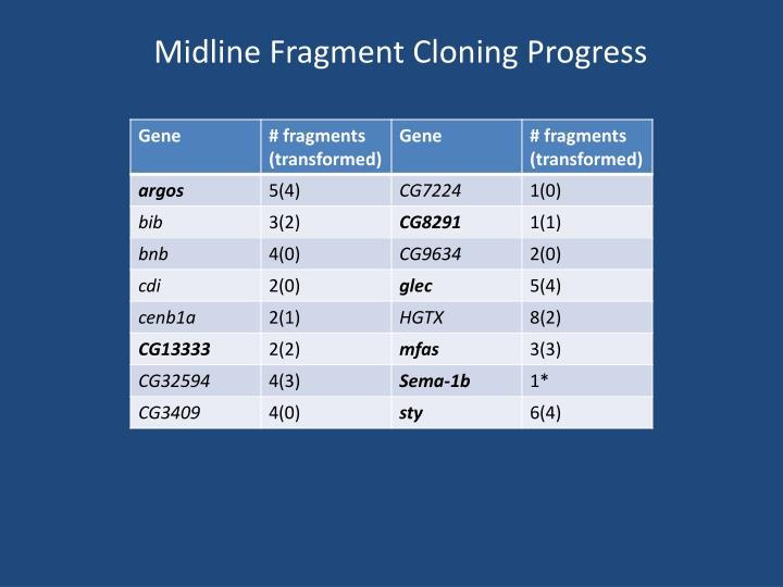 Midline Fragment Cloning Progress