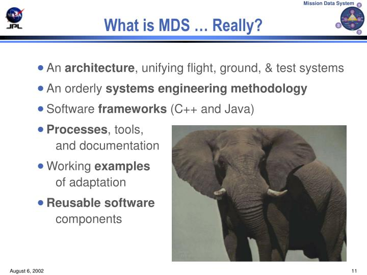 What is MDS … Really?