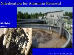 nitrification for ammonia removal
